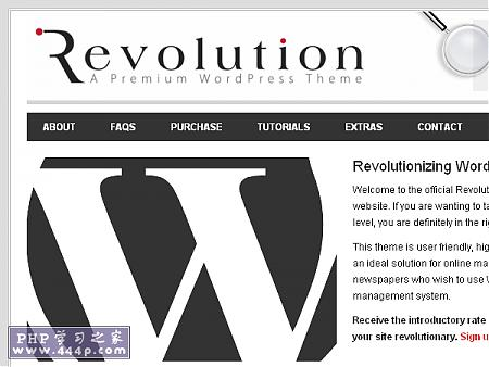 WP Premium Template: Revolution Theme